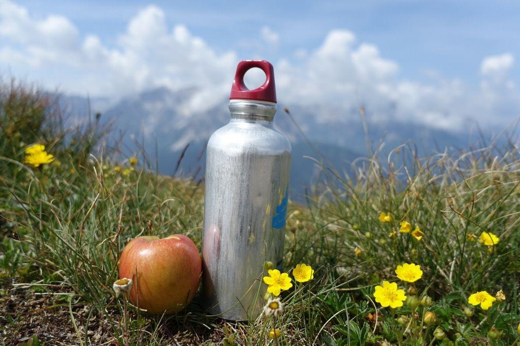 Apfel und Trinkflasche auf einer Wiese