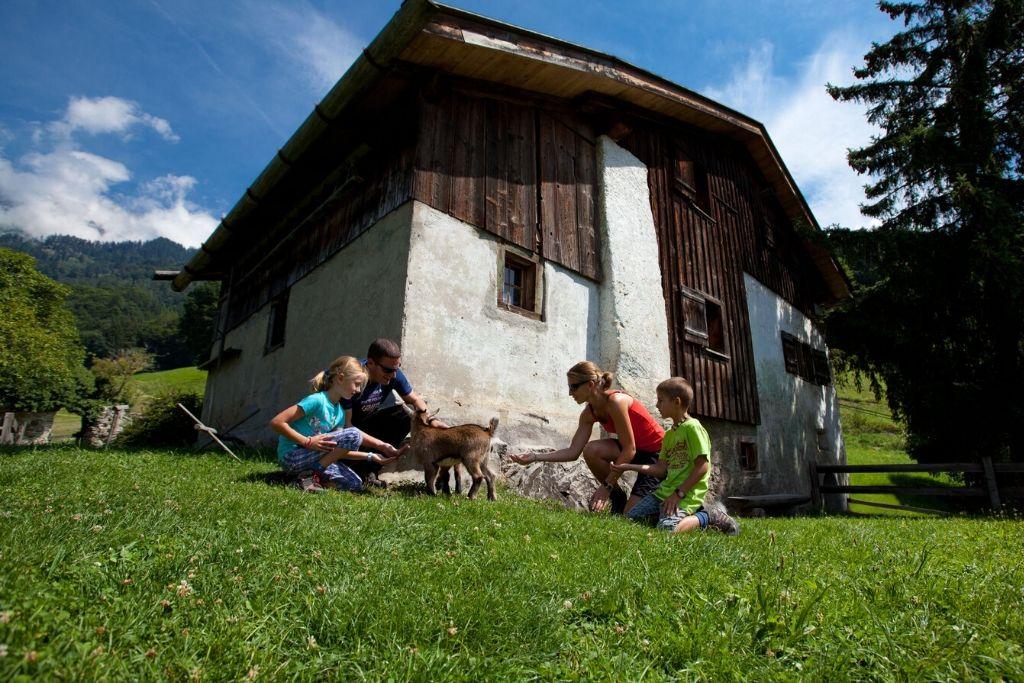 Familie kniet vor Heidihaus und füttert Ziegen