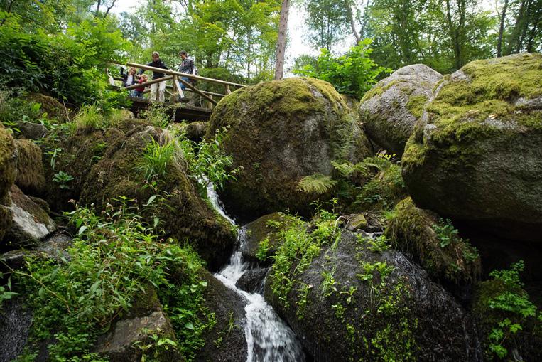 Gaishölle Wasserfall im Schwarzwald