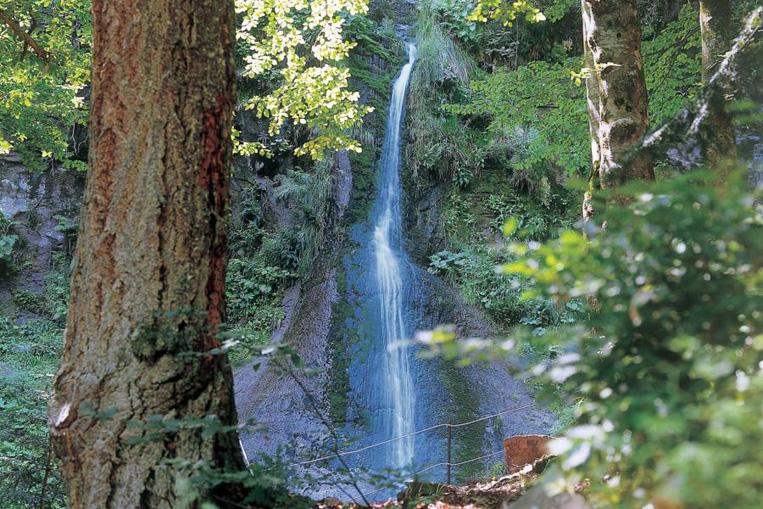 Sankenbach Wasserfälle im Schwarzwald