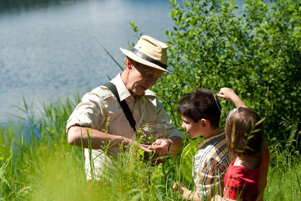 Tierwelt entdecken Klopeiner See